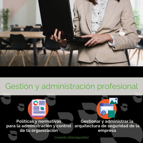 ciberseguridad gestion administracion - Empresa de Ciberseguridad